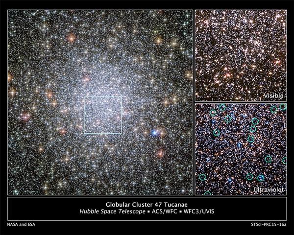 Ammasso globulare 47 Tucanae ripreso da Hubble Space Telescope. Crediti HST/ESA/NASA