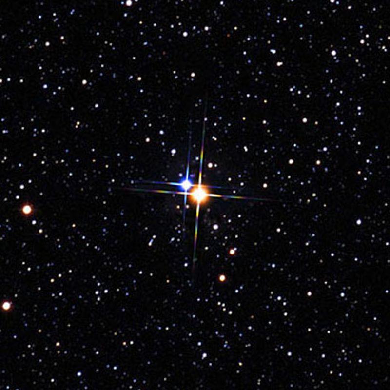 """Il sistema di Albireo, una delle """"stelle doppie"""" più famose del cielo sebbene la binarietà è stata a lungo in discussione. Crediti Palomar Observatory"""