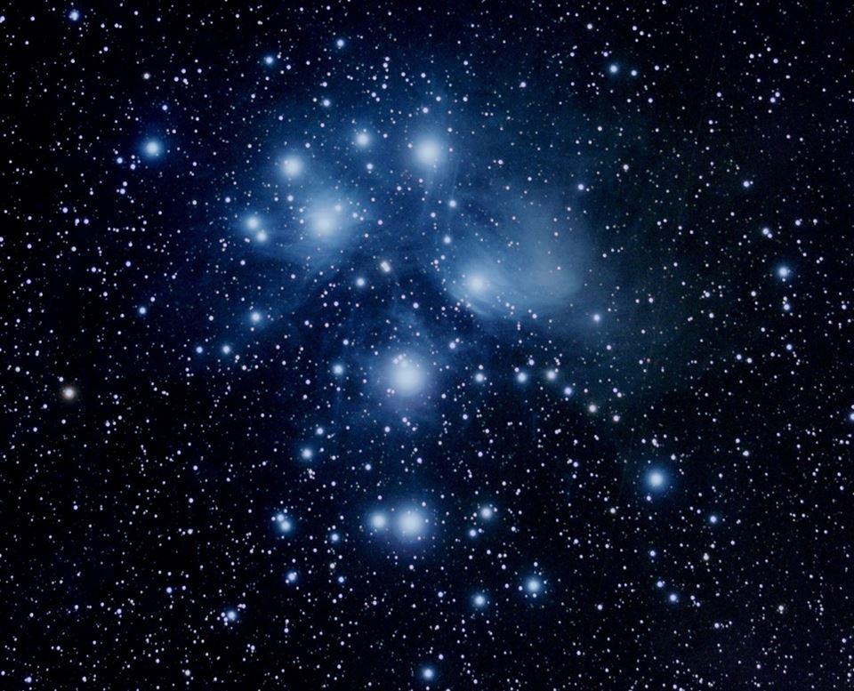 Pleiadi, M45 nel Toro. Crediti Elisa Cavalli