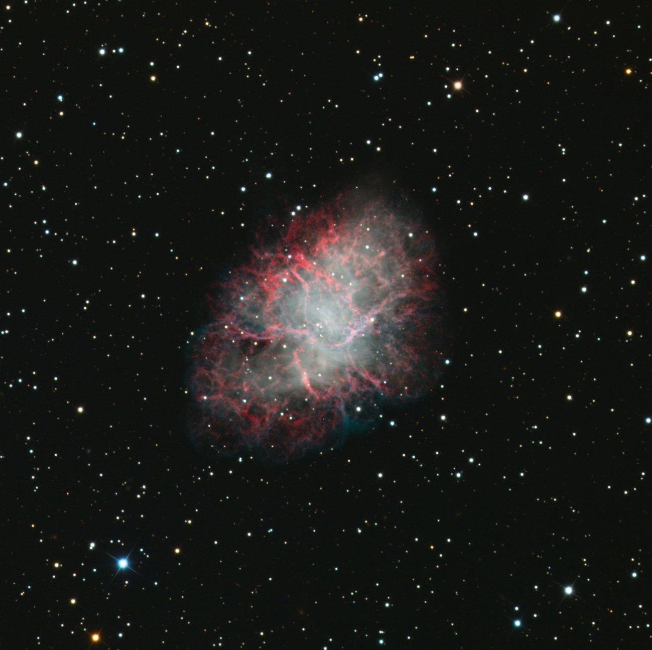 Il resto di supernova M1, Crab Nebula, un oggetto relativamente giovane e ancora compatto. Crediti Sid Leach