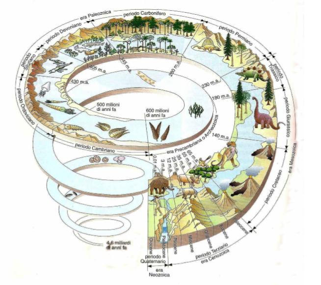 Risultati immagini per La storia della vita sul pianeta Terra